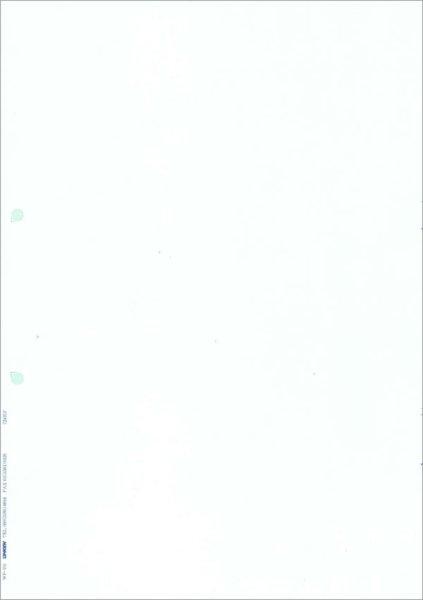 画像1: WP-101無地帳票(A4タテ) 応研販売大臣ソフト専用サプライ用紙伝票 (1)