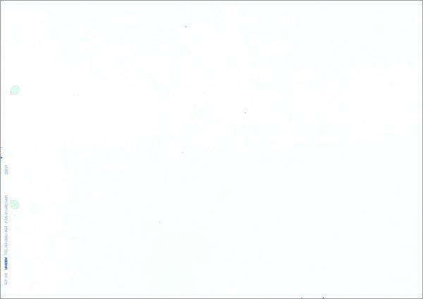 画像1: WP-102無地帳票(A4ヨコ) 応研販売大臣専用サプライ用紙伝票 (1)
