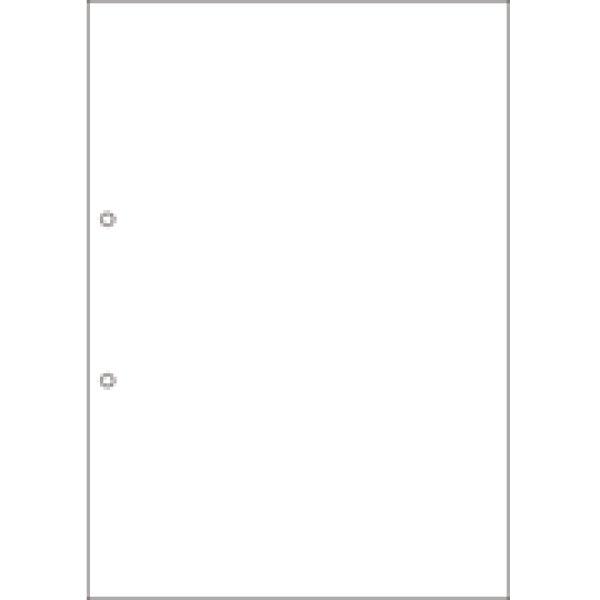 画像1: BPC2001マルチプリンタ帳票 複写タイプ A4 ノーカーボン 白紙2穴  (1)