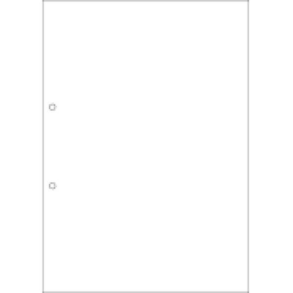 画像1: FSC2001FSC(R)認証 マルチプリンタ帳票 A4 白紙 2穴x3冊ヒサゴ(hisago)伝票 (1)